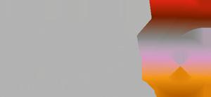 DOK6 logo