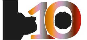 DOK6 10 jaar logo